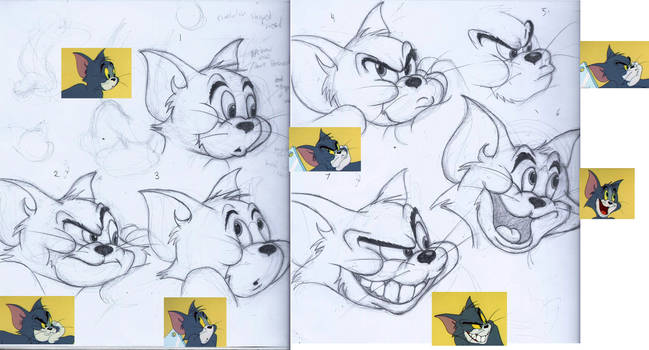Seven Shades of Tom (face drawing study)