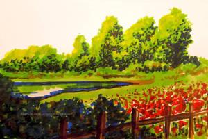 Near The Poppies by ReggieJWorkshop