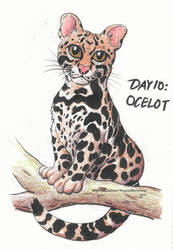 Drawtober (Day 10): Ocelot