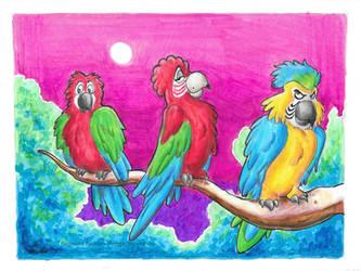 Birds At Midnight