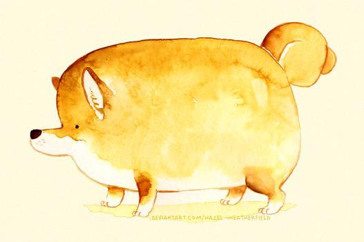 Fat Shiba