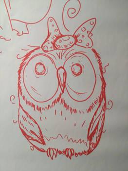Owl boring