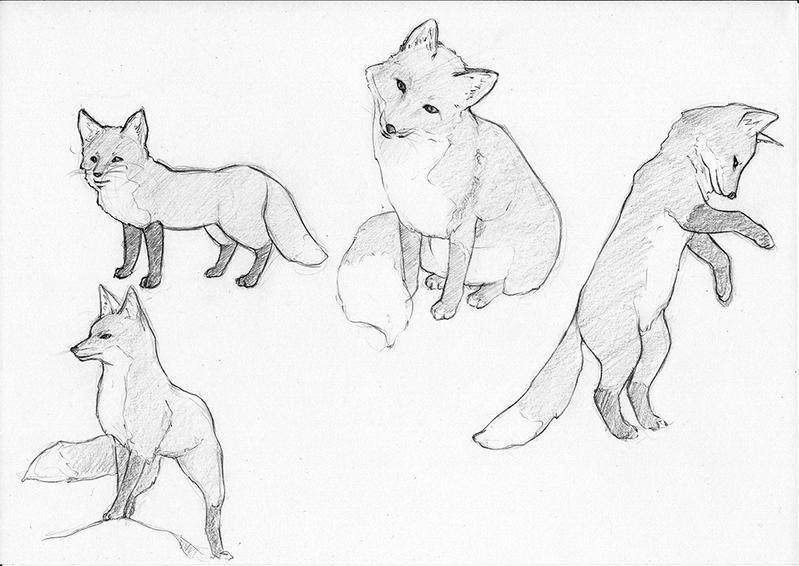 Foxes by Eyrann