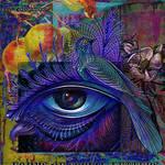 Eyebird new