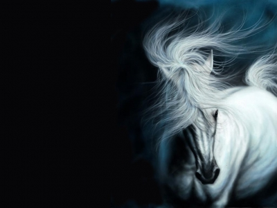 ������ ����� ����� ���� white_horse_by_tom27