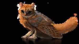 [OPEN]  Dromi Meowl