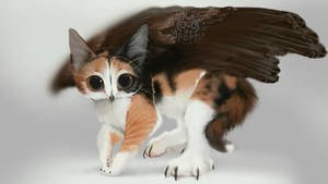 [closed] Real #14 Pettable Calico Meowl