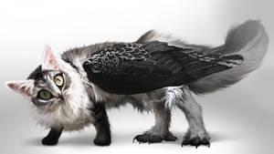 [Closed] Real #16 Siberian Meowl