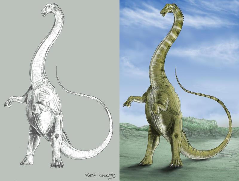 Image Gallery seismosaurus dinosaur