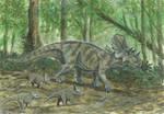 Horns07: Avaceratops