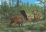 Horns08: Anchiceratops
