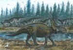 Horns10: Styracosaurus
