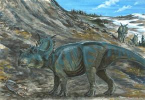Horns12: Pachyrhinosaurus by tuomaskoivurinne
