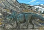 Horns12: Pachyrhinosaurus