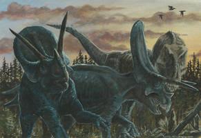 Horns13: Torosaurus by tuomaskoivurinne