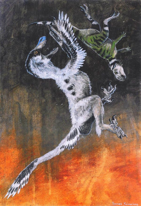 Leaping raptor by tuomaskoivurinne