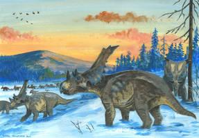 Horns20: Chasmosaurus by tuomaskoivurinne