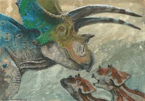 Horns26: Titanoceratops
