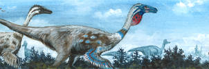 Ornithomimus edmontonicus