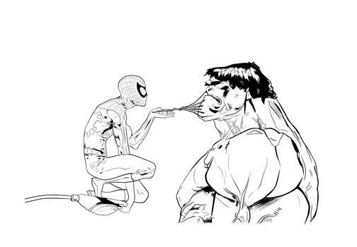 Spiderman and Hulk