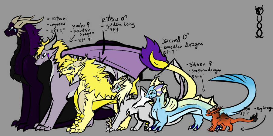 gemstone kid s height chart dragon forms by catalysticproperties