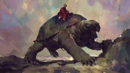 The Tortoise Trainer