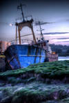 Evening Trawler