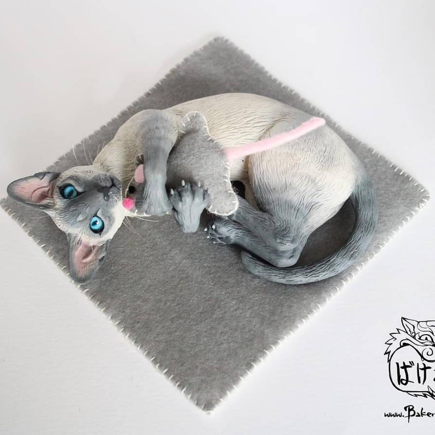 Playing Siamese cat - lilac point by Bakenekoya