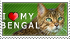 I Love My Bengal Stamp by pipamir