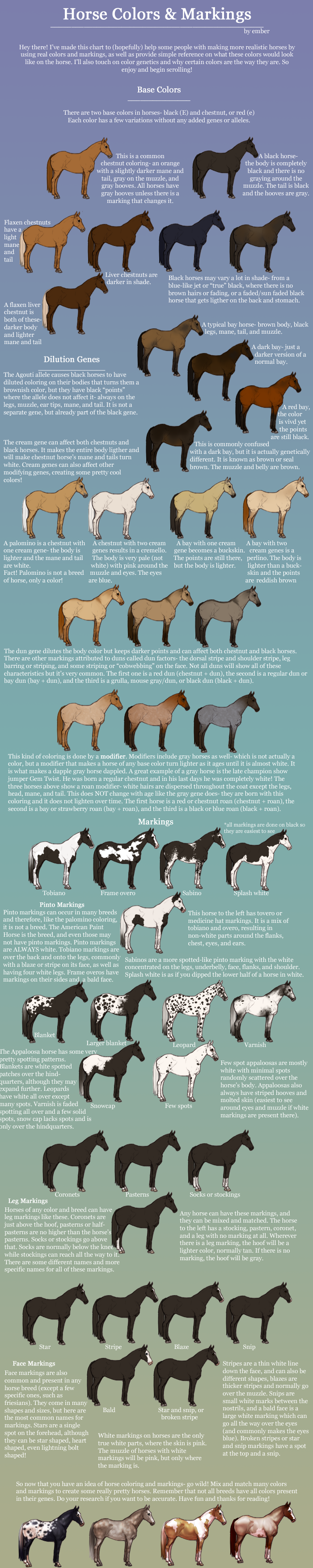 Equine color and markings chart by pipamir on deviantart equine color and markings chart by pipamir nvjuhfo Choice Image