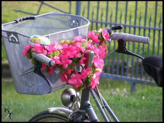 Spring ride by Katana-Tate