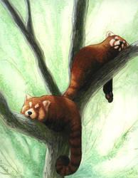 Panda Loafs by maggock