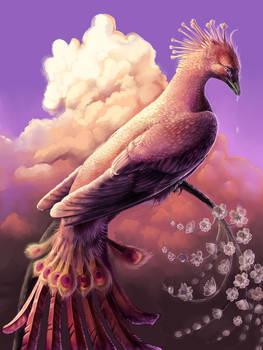 Phoenix Tears