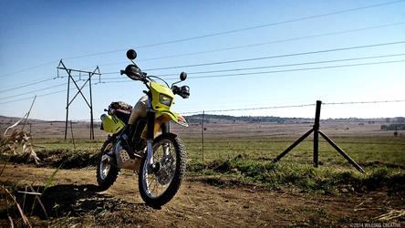 Suzuki DR650 by wiledog