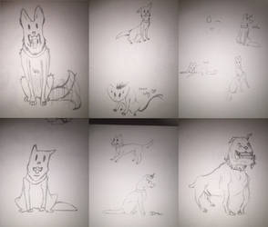 Dogs Dogs Dogs by crushedbutterfly101
