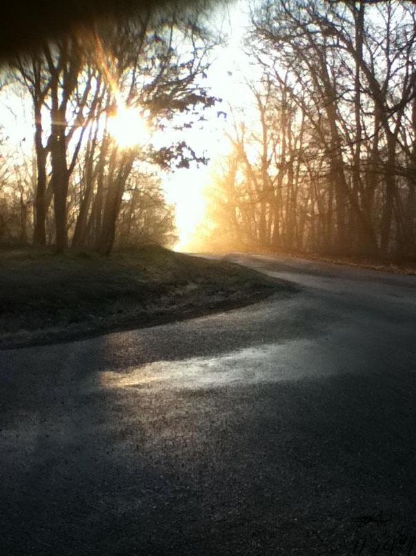 Sunrise at the Woods. by MackieUchiha