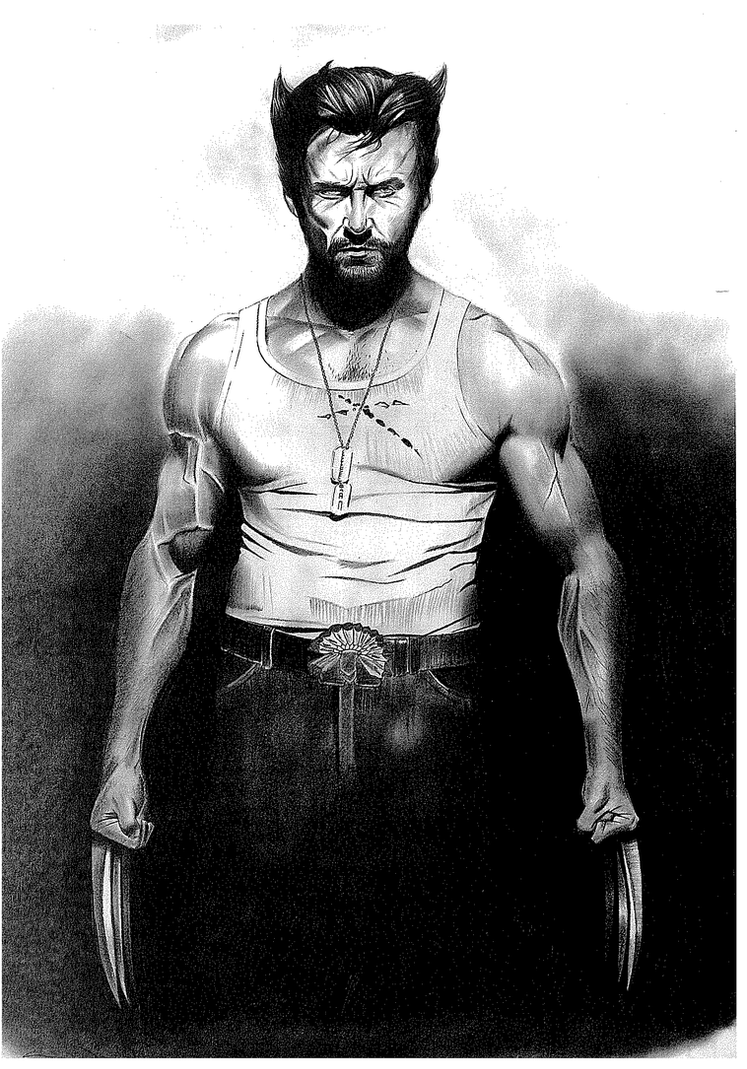 Wolverine by donchild