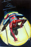 Alex Ross Spiderman by donchild