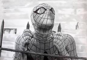 Spiderman Seventies TV Show