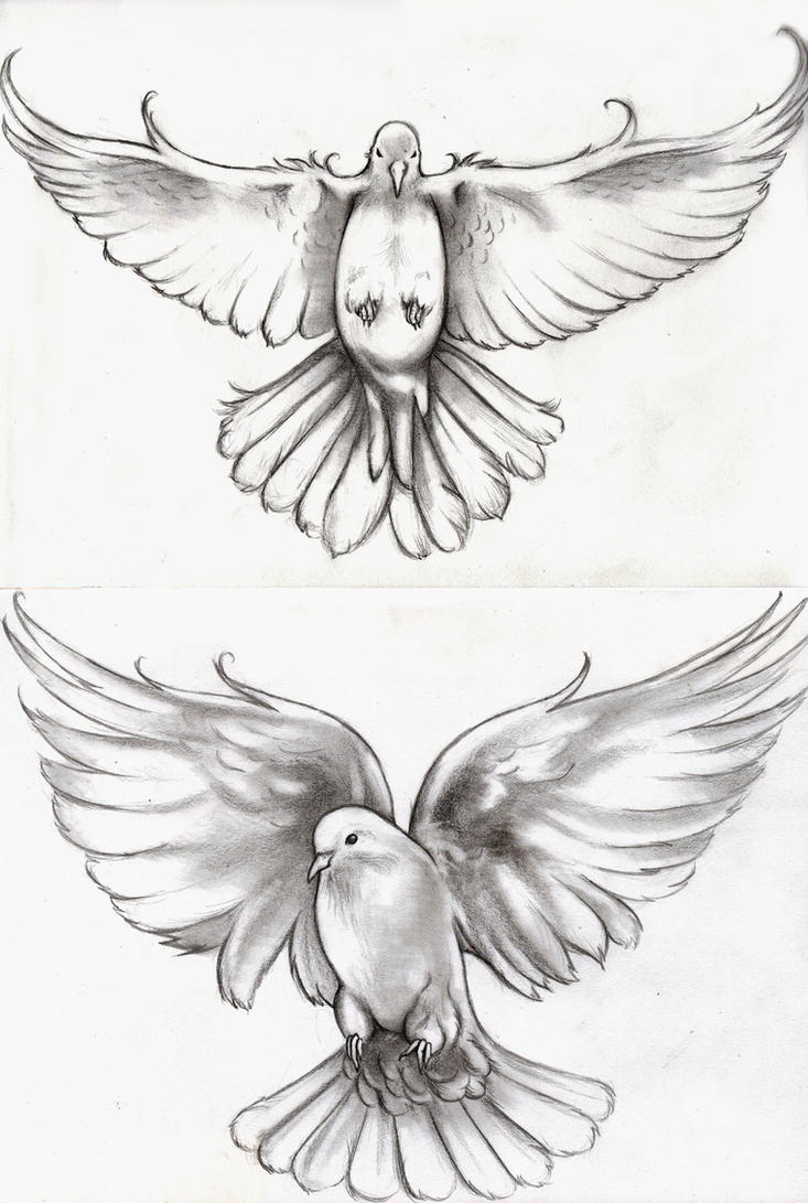 Displaying 17gt Images For 3 Flying Doves Tattoo