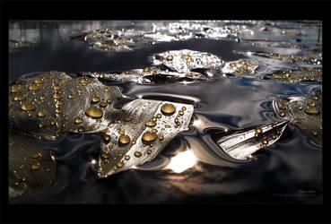Rain Lilies by ageofloss
