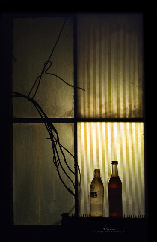 Prozori koji govore Window_by_ageofloss