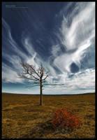Arid Lands by ageofloss