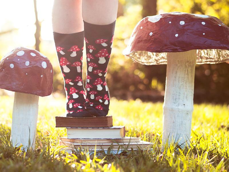 Wonderland by Queen-Kitty