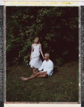 Viburnum Polaroid 1