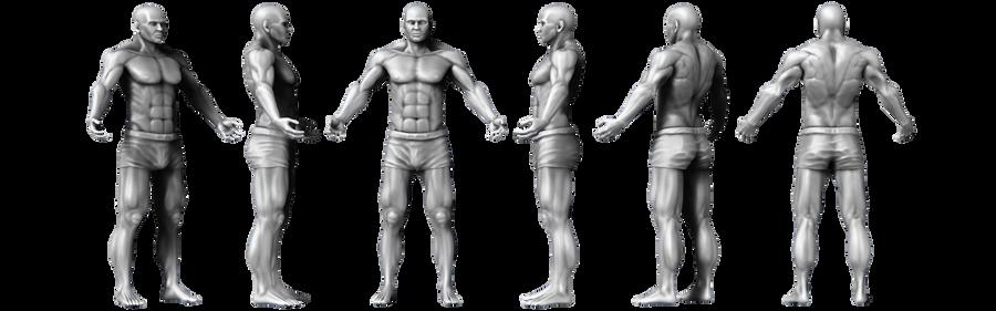 Male Anatomy Study by o--Xypher--o