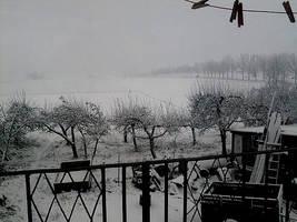 Winter 2008 by shetty05