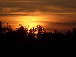 Sunset by shetty05