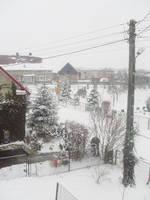 winter 2009 in Poland by shetty05