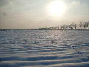 winter 2010 in Poland..
